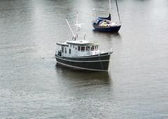 Bike Commute 54: Toy Boat by Rootchopper