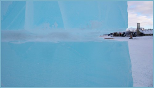 Ice sculpture at Freeze.