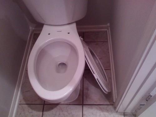broken toilet by you.