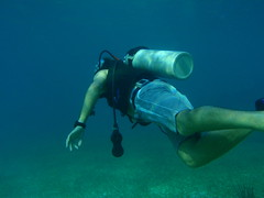 Scuba Diving in Mexico at Clint's Wedding