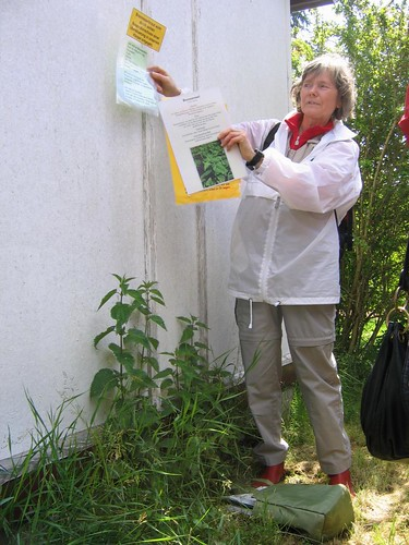 Edible plant walk