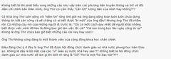 TranNgocTho8 by Dao Van Quoc Te Tran Ngoc Tho