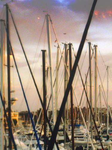 Boats on the Marina