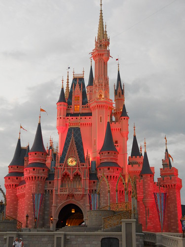 magic kingdom (317)