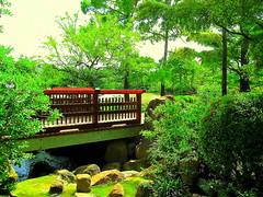 Bridge for walking meditation