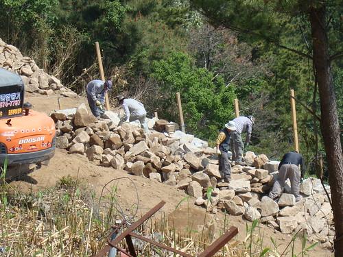 Mauer Mai II