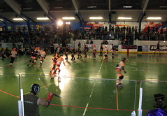Roller Derby Warmup