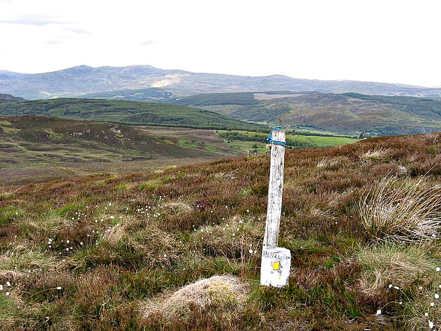 Bookcrossing on Meall Mor, Boblainy Forest.