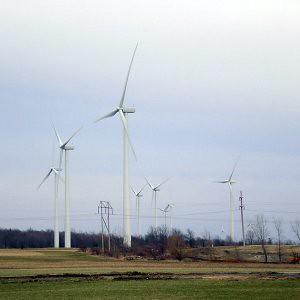 NF: Windmills