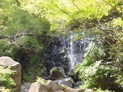 Hakone, old trail run