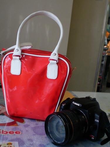 Red Techtote DLSR bag