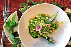 3rd Course: 2x-shucked peas and GOLDEN SHOOTS in a consommé of the shells