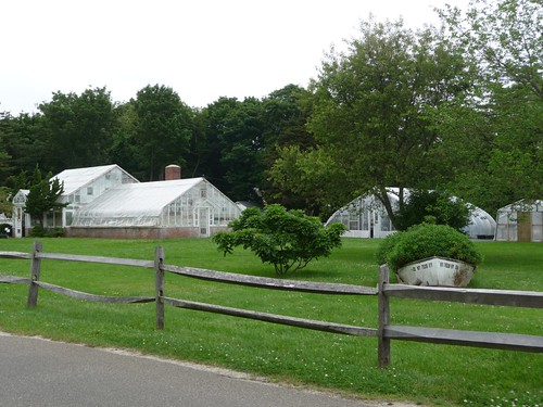 Greenhouses at Meadow Edge