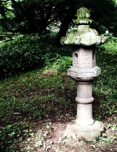 Japanese lantern