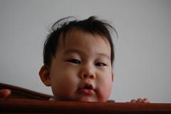 20090128-DSC_0019.jpg