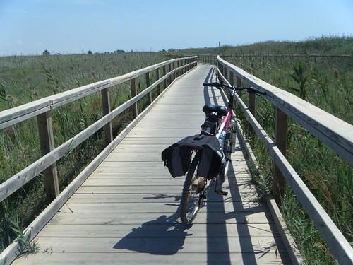 La bici por el sendero de la playa de la Hita (Los Alcázares)