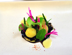 """2nd Course: """"Earth and Sea"""""""