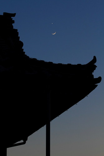 Moonrise Over the Temple Roof