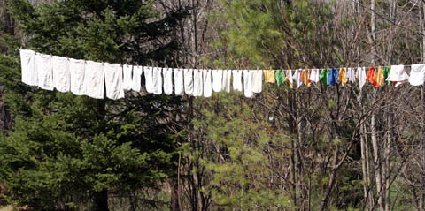 diapers on the line :)