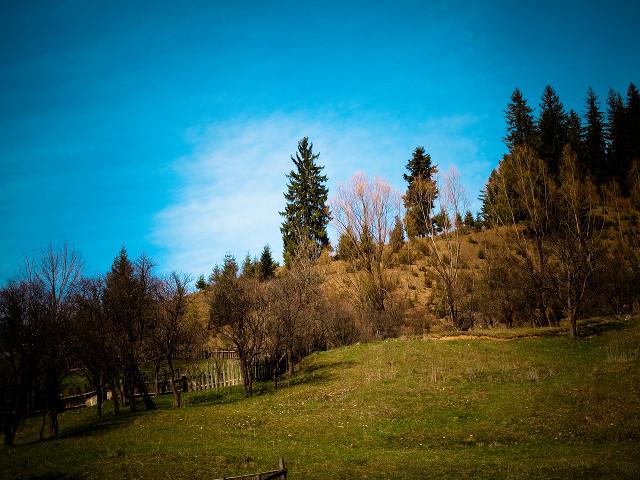 Pe deal, lângă mănăstire
