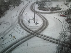 More snowy tracks: a view from the office window