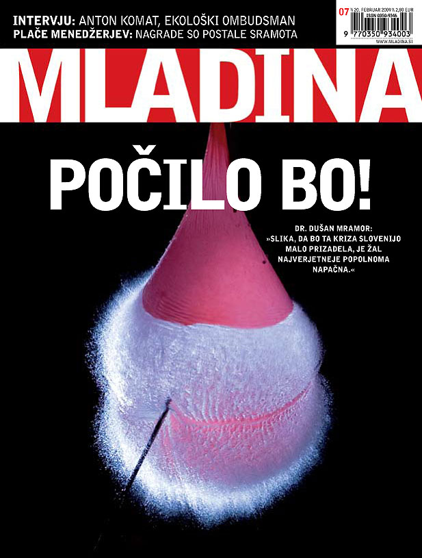 Mladina 08/2009 - 3