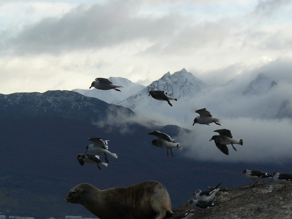 Argentina, Ushuaia, Terra do Fogo
