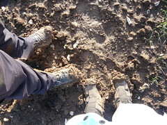 Tres Muddy boots