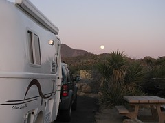 Joshua Tree Moonrise / Campsite