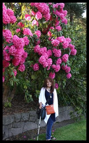 Portland Intnl Rose Garden, Memorial Day Weekend