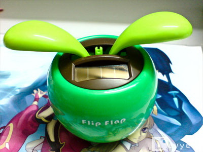 Flipflap1