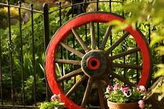 Ye old cart wheel