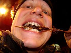 eating scorpions