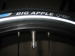 Schwalbe Big Apple - Fitted