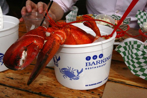 2lb lobster at the Barking Crab by arcticpenguin.