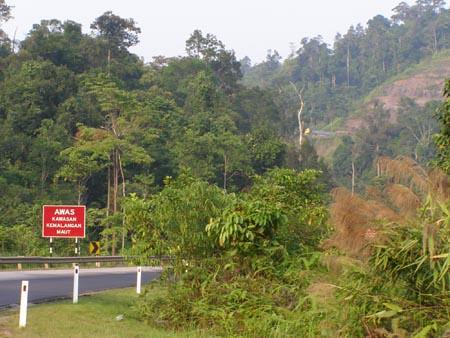 Setelah turun dari bukit ini, bas tidak dapat bergerak lagi. Nampak lori kepala kuning sedang mendaki?