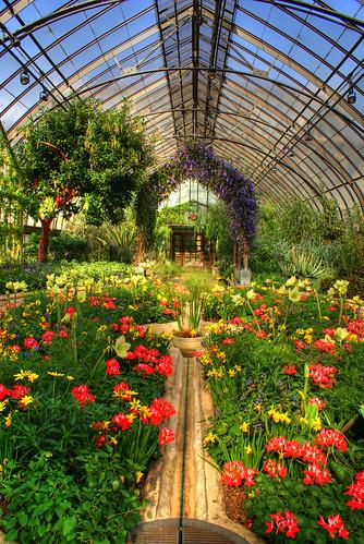 Mediterranean Garden by larryn2009.
