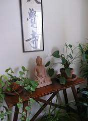 Leafy Buddha
