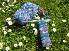 Socks_2009_04_11_HarryPotter6_Harry_WIP