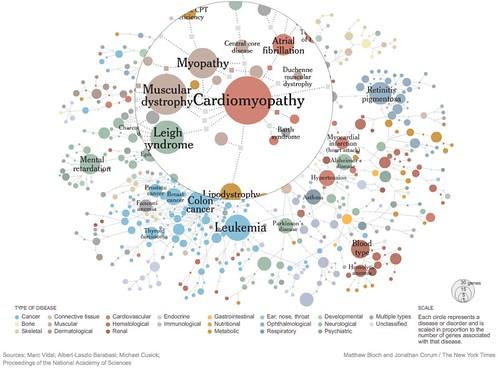network of diseases