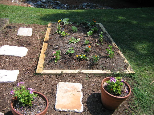 The newest vegetable box: herbs, squash, melons and a few tomatoes.