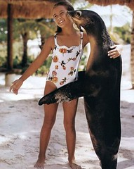 Girl and Seal
