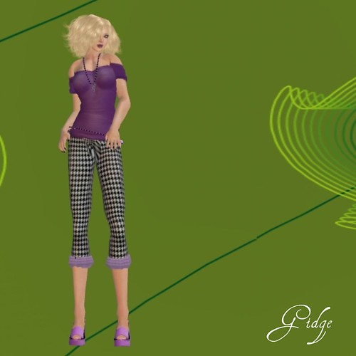 Top, Pants, Jewelry, Belt and Shoes Included as Part of VIP Hunt Gifts