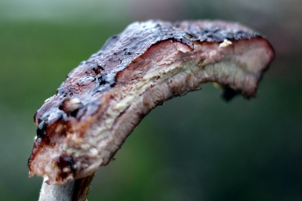 These are the highest level of O-M-F-G ribs. This is why Buffalo shall always exist.