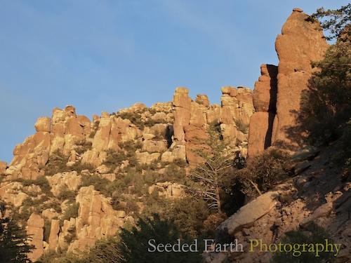 Rock Pinnacles in Chiricahua