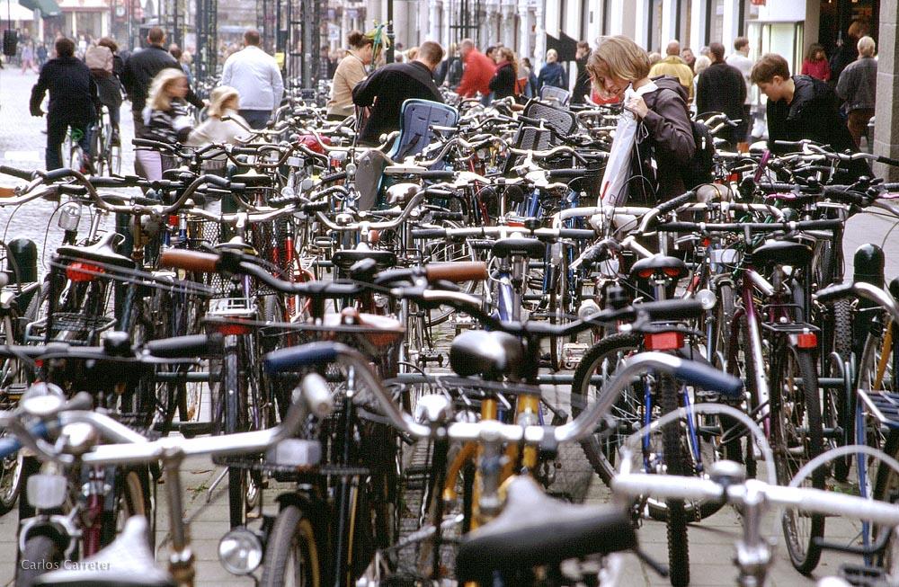Bicicletas en Lund
