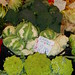 Cruciferous Vegetables on sale at the Rialto Market, Venice