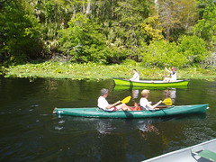 Canoeing and Kayaking at Wekiva