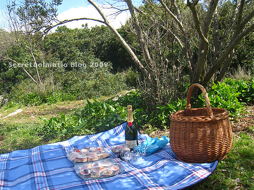 Picnic lunch setup...
