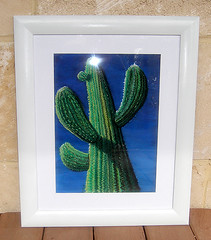 Cactus Dreaming - Show Off 5 Exhibition